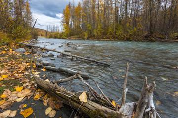 Fall at small river in Kenai, Alaska, USA