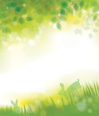 Vector green leaves border and rabbits in green grass nature bac