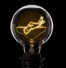 Lightbulb with a glowing wire in the shape of Nova Scotia (serie