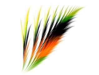 Colourful and dynamic feather fractal abstract background