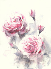 Roses flowers watercolor painting illustration greeting card