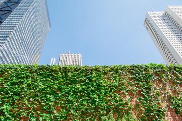 都会の高層ビルと新緑