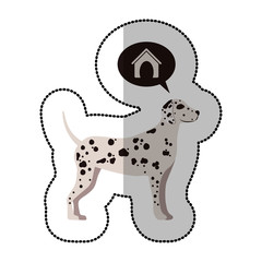 colorful image middle shadow sticker with dalmatian dog thinkin home vector illustration