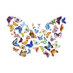 Watercolor butterflys butterfly