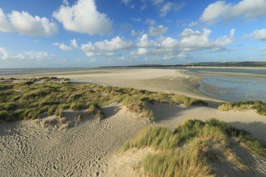 dunes of the Touquet, côte d Opale, pas de Calais, hauts de France , France