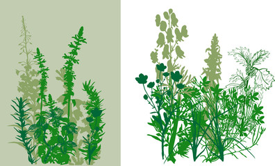 white and green grass illustration