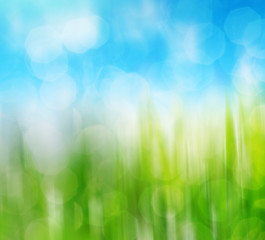 Blurry green grass and sky. Abstract spring natural background with beauty bokeh.