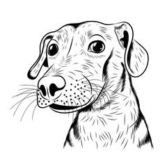 vector hand-drawn sketch portrait of a cute dog