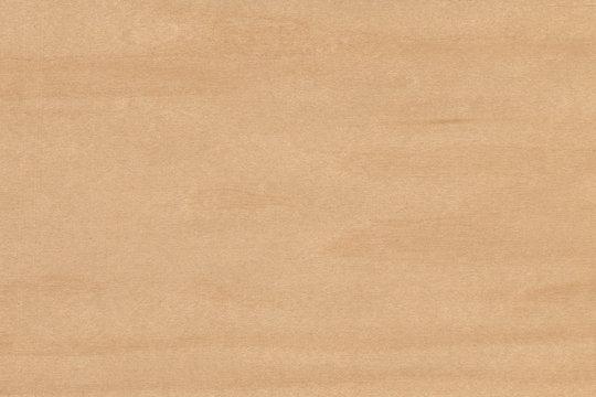 Maple- white (Acer Saccharinum) USA