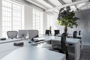 Modern bright office interior