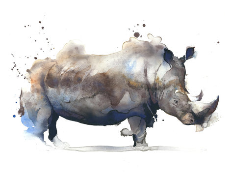 Rhinoceros african safari animal watercolor painting illustration isolated on white background