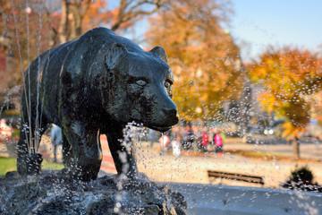 Fontanna niedźwiadka na przemyskim Rynku,Fountain bear on Przemysl Market