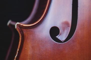 Cello close-up photo