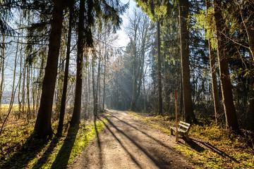 Trekking in morning light around Oberstdorf, Germany