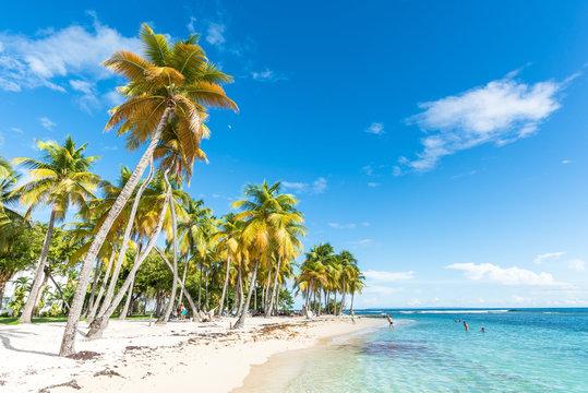beachfront of Plage de la Caravelle in Guadeloupe