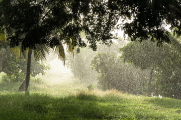 tropical shower while sun is shining