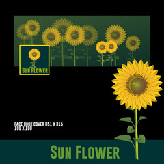 SUN FLOWER, cute image isolated
