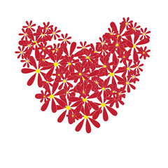 Bouquet of daisies, heart shape. Vector illustration