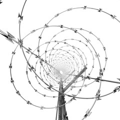 Coil of Steel Barbed Wire on a Metal Fence
