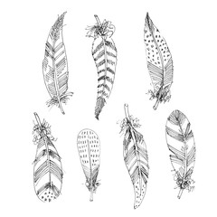 Set of hand drawn black and white feather. Wings in Boho stile
