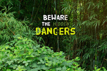 Beware the hidden dangers and welcome to the jungle.  Things tha