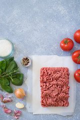Ingredients for bolognese sauce: ground meat, tomato, onion, garlic, herbs, seasonings