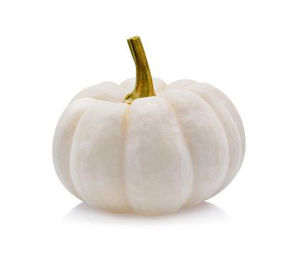 white pumpkin on white background