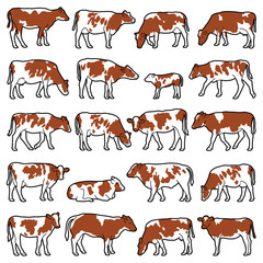 Cow collection - vector outline illustration