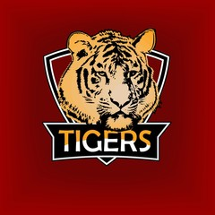 Professional sports logo, emblem template with the image of the tiger