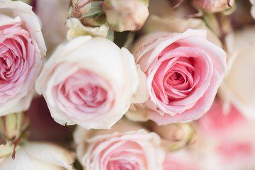 Pink roses. Detail of wedding bouquet