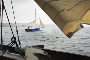 Traditional sustainable oyster fishing. Traditional sailing boats on the river Fal estuary.