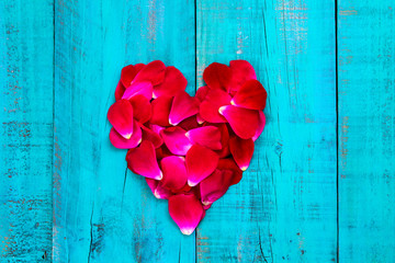 Rose petals in shape of heart on teal blue wood background