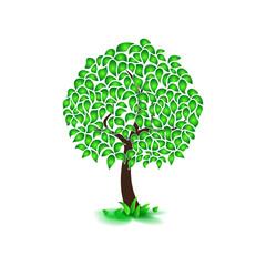Isolated on white background summer tree, dense foliage, flat style. illustration