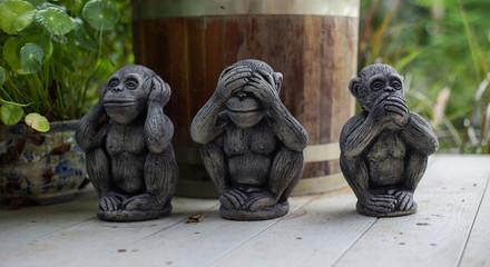 The three wise monkey, three mystic apes(see no evil, hear no ev
