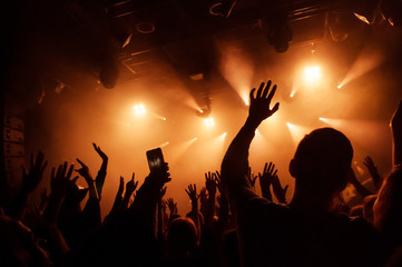 Hand fans raised up, during a concert