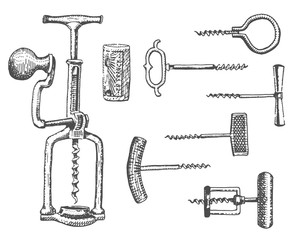 Big set of corkscrew in vintage old engraving style, hand drawn in scratchboard style