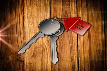 Composite image of metallic key with red home ring
