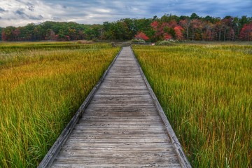 Walkway, Destination, Horizon