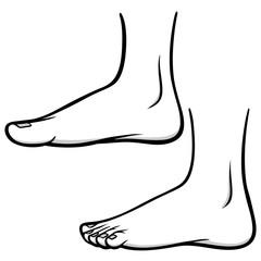 Foot Profiles Illustration