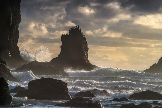 Light fades and the waves break over the rocks offshore at Cannon Beach while gulls watch the show