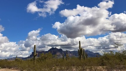 Wall Mural - Arizona desert landscape with fluffy white clouds passing by. Time-lapse