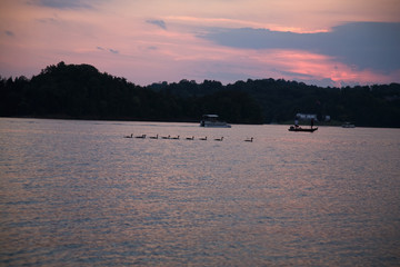 Sunset & Geese at Douglas Lake, TN