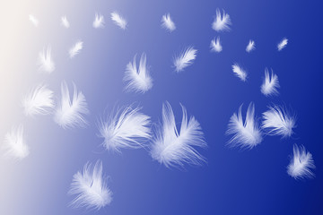 Blue Abstract Page of Floating Feathers