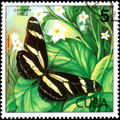 CUBA - CIRCA 1982: Postage stamp printed by Cuba shows butterfly Heliconius charithonius ramsdeni, series Butterflies