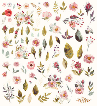 Set of watercolor illustration with amazing flowers and leaves
