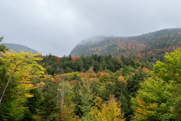View of mountain and forest on Cloudy day at Adirondack Park, New York, USA.