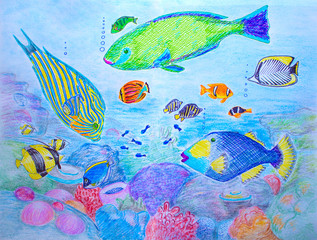 Hand-drawn illustration Coral fishes. Colorful pen drawing on white paper