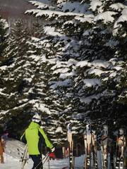 スキー場 北海道
