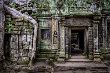 Ta Prohm temple, Siem Reap, Cambodia