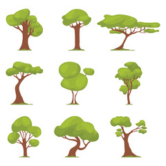 Set of abstract stylized tree. Natural illustration. Icon. Vector illustrations.